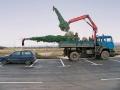 На този обект бяха засадени няколко едроразмерни иглолистни растени – вечнозелени ели. За целта беше използвана тежка механизация – камион с бордови кран, както и комбиниран багер. Балите на растенията тежаха почти един тон.