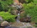 Тази река, този поток в стил дива природа, е изработен от Миро преди няколко години в двора на едни прекрасни и много възпитани хора.  Тяхното дворно място се намира някъде в подножието на Витоша, София. Там Мирослав е работил като подизпълнител на обекта на друга озеленителка, с която се уважават.